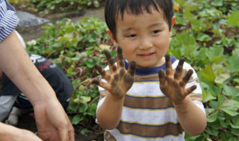 【食育コラム】「体にいいから食べなさい!」は好き嫌い対策に効果なし?!子供が野菜を食べ残す原因は?