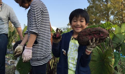 芋掘りイベント☆大きなお芋とピース