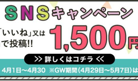 収穫体験付BBQ ベジQ SNSキャンペーン!4月30日までの予約で1500円引き
