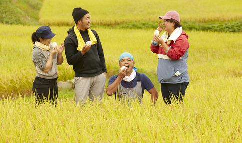 稲刈り・田植えで農家を応援。「シェア田んぼ」始動。