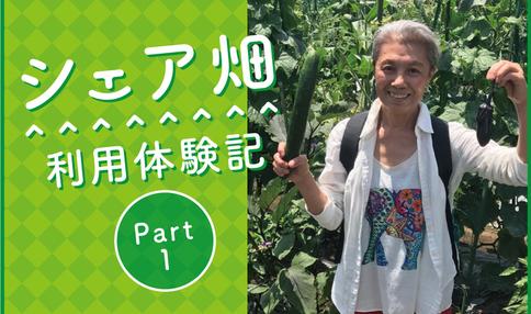 【シェア畑利用体験談 part2】『家族と過ごす農園はとても有意義な時間となっています』