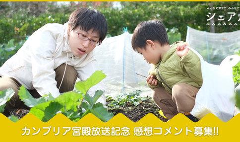 カンブリア宮殿放送記念SNSキャンペーン!野菜プレゼントも有り!