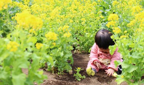 園芸療法って知ってますか?
