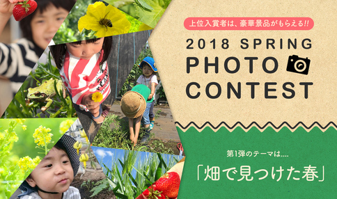 写真コンテスト、投票受付スタートしました!