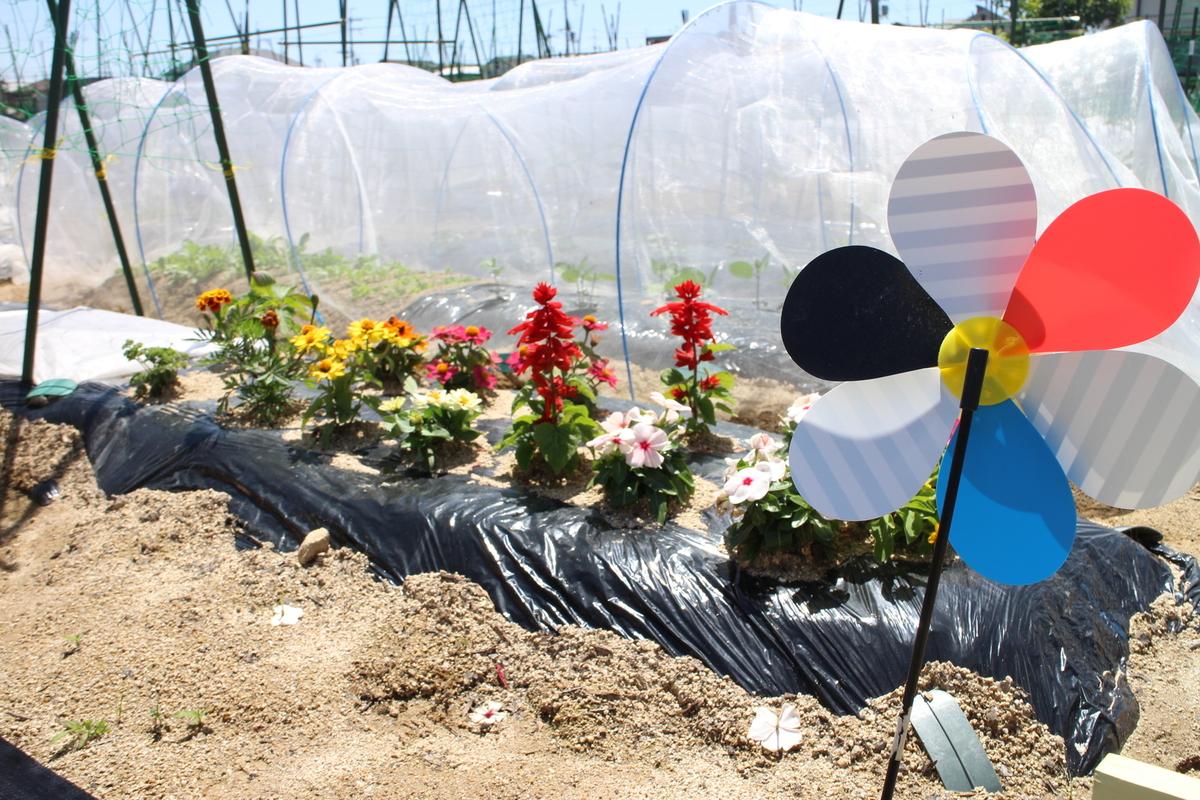 お花を植えられる利用者さんもいらっしゃいます