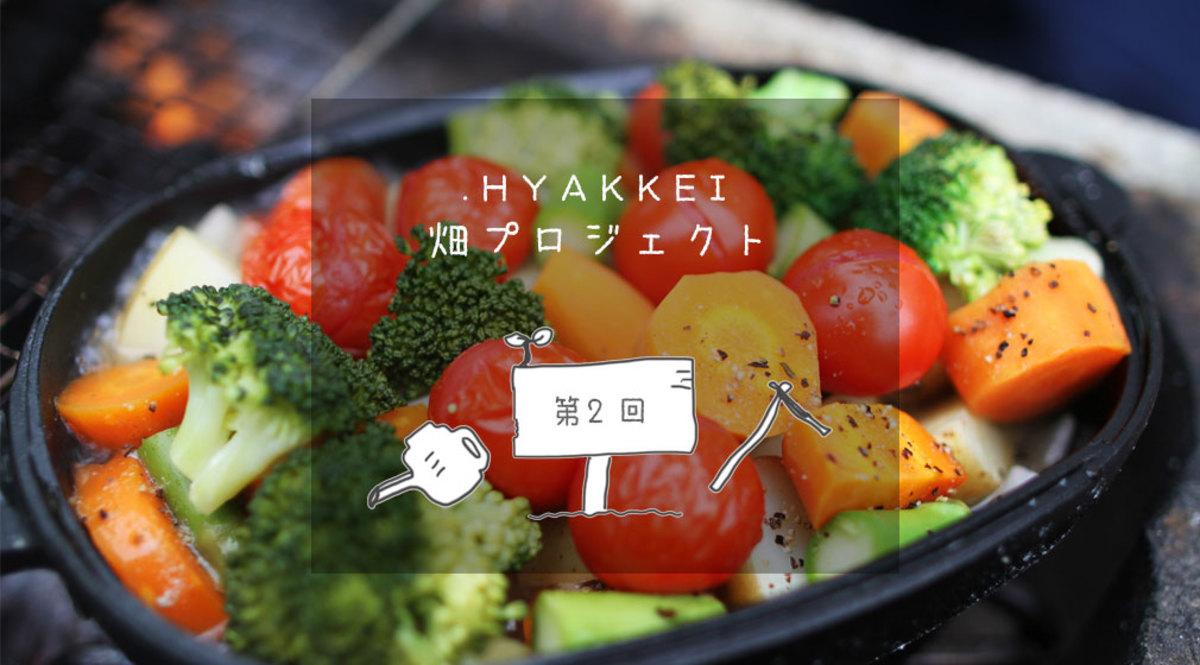夏のBBQに向けた、夏野菜の植え付け【.HYAKKEI × シェア畑深大寺   第2回】