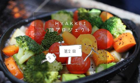 夏のBBQに向けた、夏野菜の植え付け【.HYAKKEI × シェア畑深大寺 | 第2回】