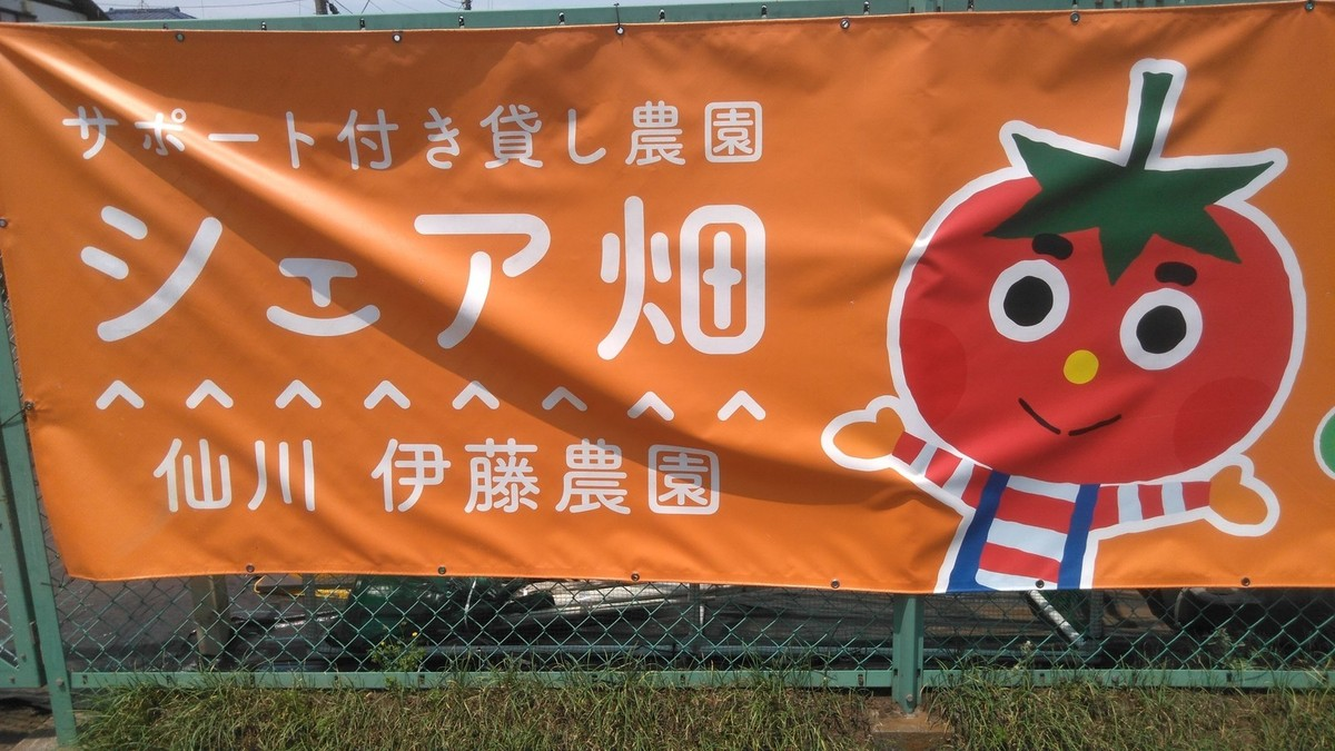 ようこそシェア畑仙川伊藤農園へ!