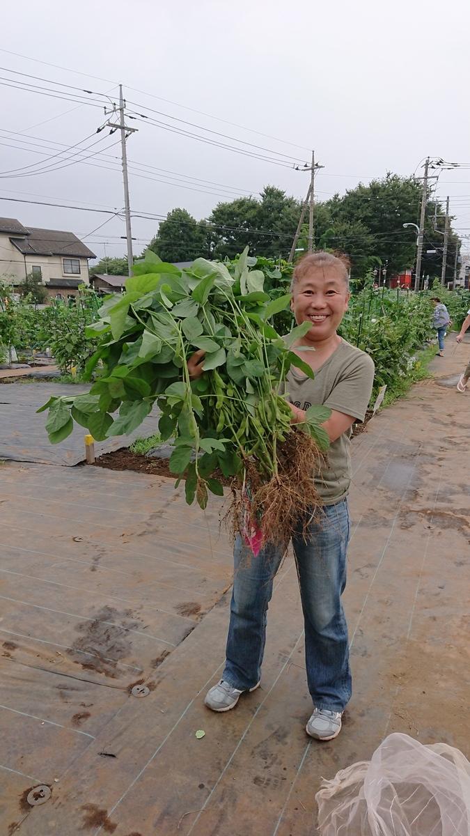 枝豆がたくさんとれました!