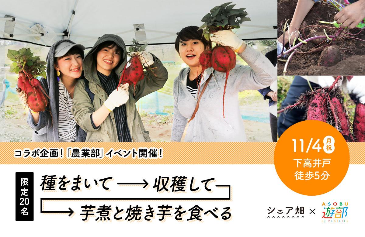 遊びのコミュニティ「遊部」×シェア畑 コラボ企画!「農業部」のイベント開催!
