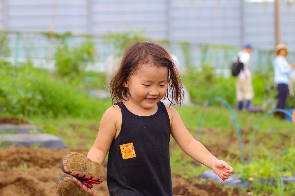 年間を通して様々な野菜が育てられます!