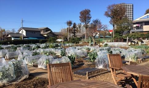 農園内に休憩スペースがあります!