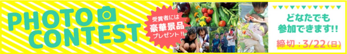 【入賞者には豪華景品!】写真コンテスト、投票受付スタートしました!