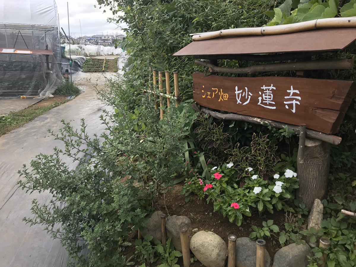 シェア畑 妙蓮寺