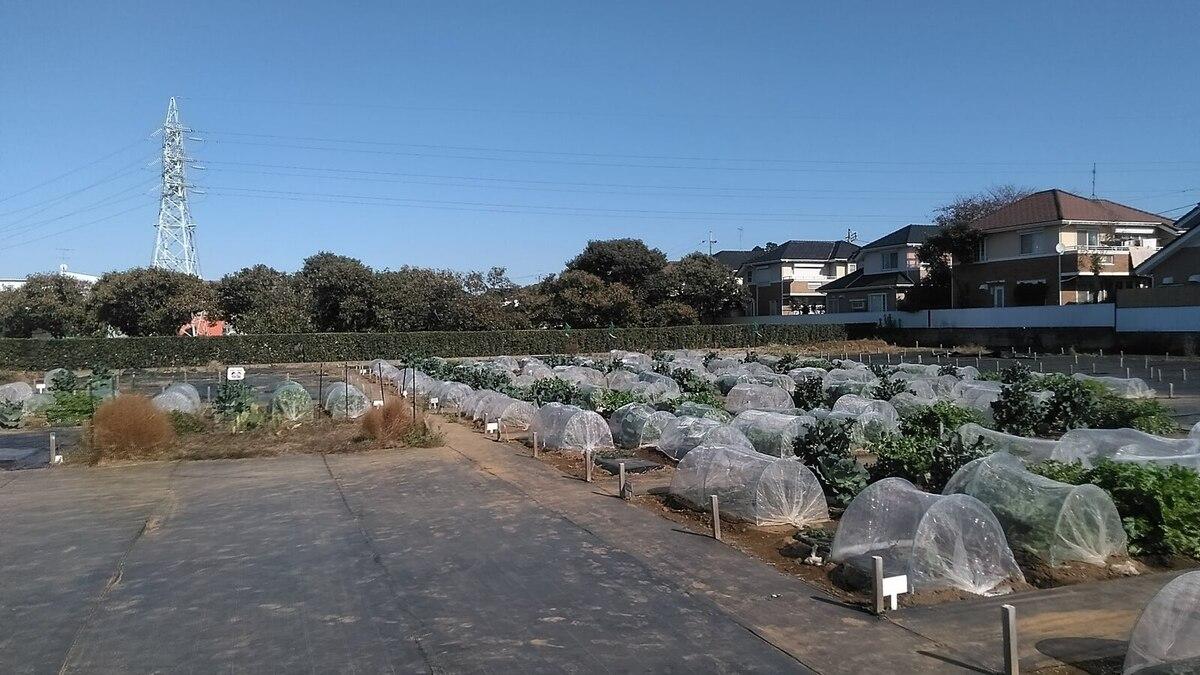 近くに建物がない気持ちの良い農園です!
