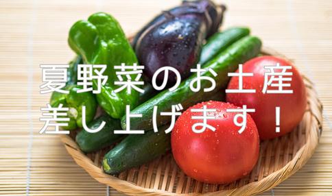 ※好評につき期間延長※【夏季限定企画】8/14(日)までに畑をご見学の方に夏野菜のお土産を差し上げます!