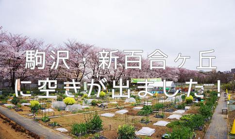 【お急ぎください】人気エリア、駒沢・新百合ヶ丘の農園に9月~利用可能な区画の空きが出ました!
