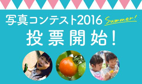 ご利用者様以外も投票OK!いよいよ『写真コンテスト2016 Summer』投票開始!