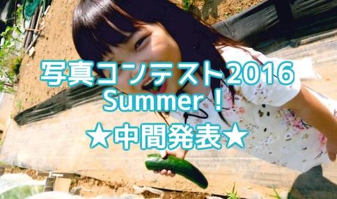 栄冠は誰の手に?!シェア畑『写真コンテスト2016 Summer』中間発表!