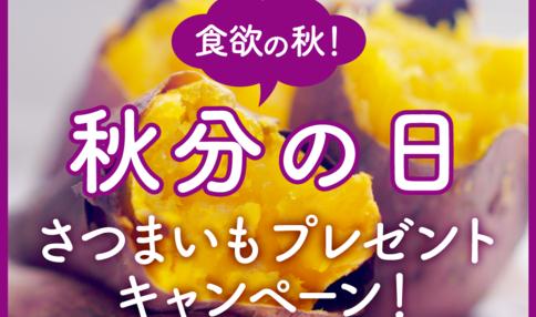 ≪SNS限定≫秋分の日!食欲の秋に『採れたてさつまいもプレゼント』キャンペーン!