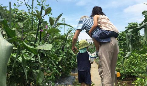 週末を農園で家族と過ごしませんか